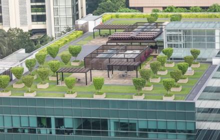Telhado Verde 440x281 - Telhados verdes