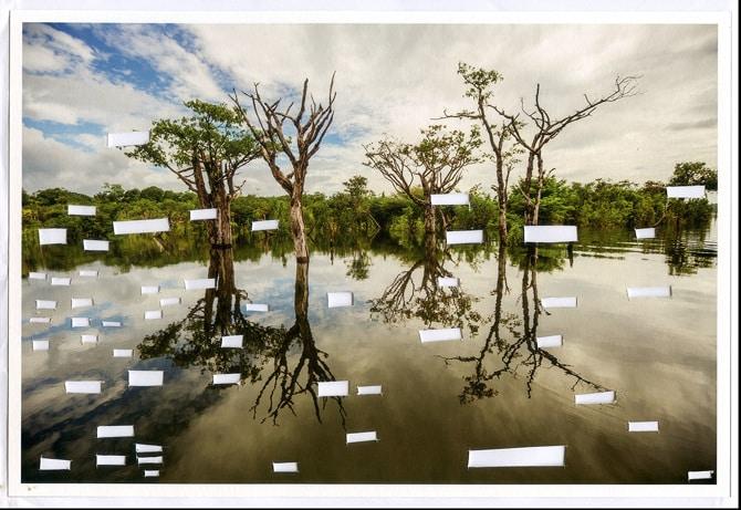 Postcards from Brazil - Voragem se instala na Galeria Amparo 60