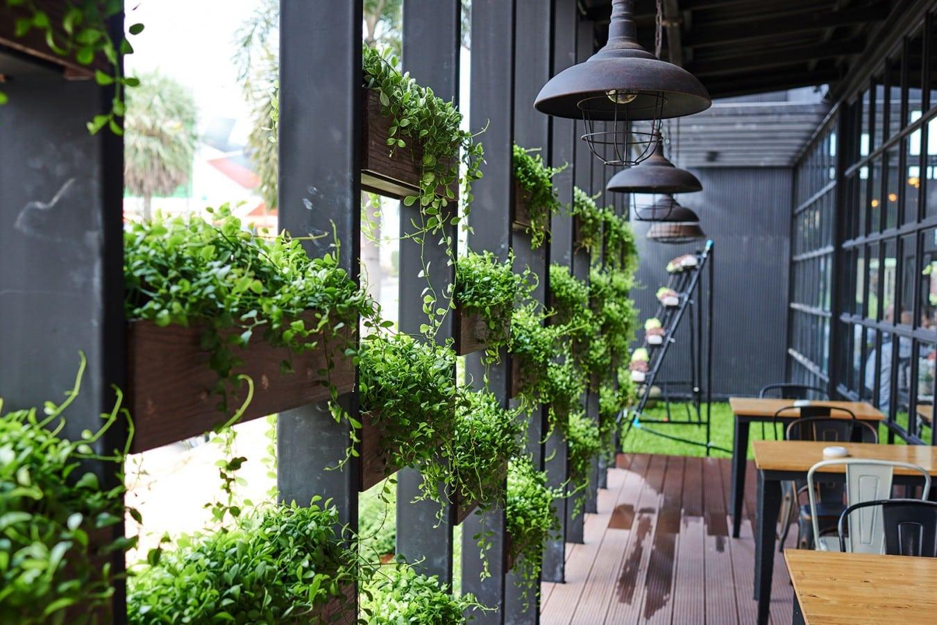 Espaço com decoração e jardim
