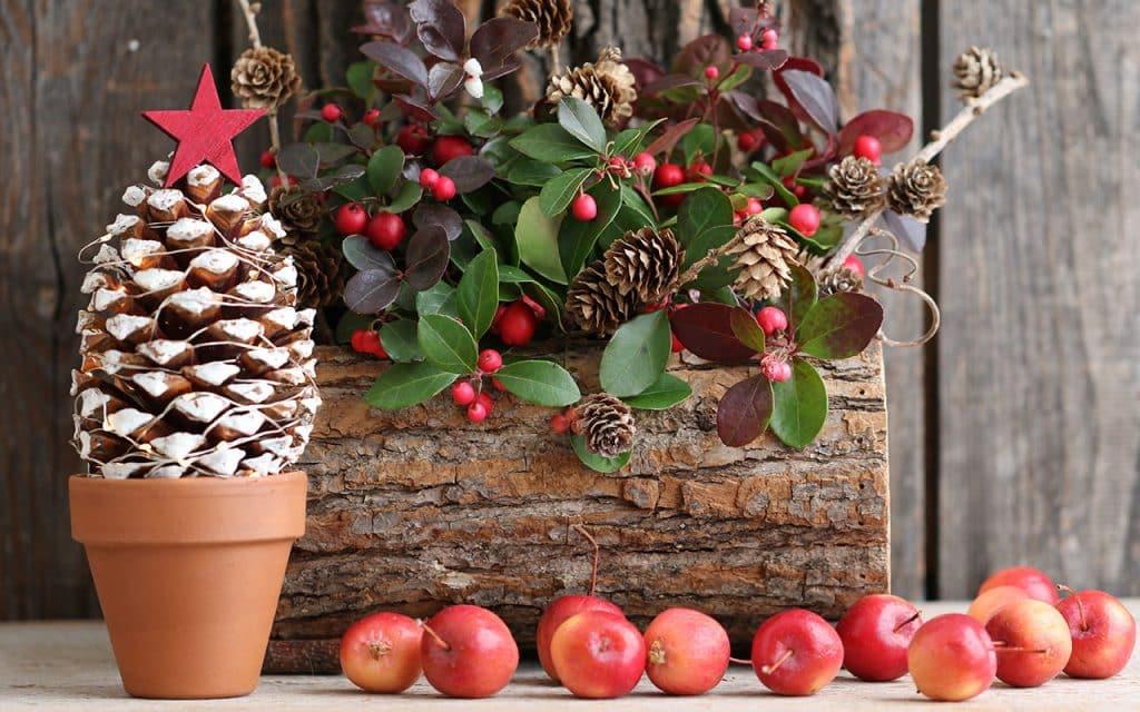 9 Pinha Galina Grebenyuk Shutterstock.com  1024x640 - Separamos alguns modelos de árvore de natal para você se inspirar