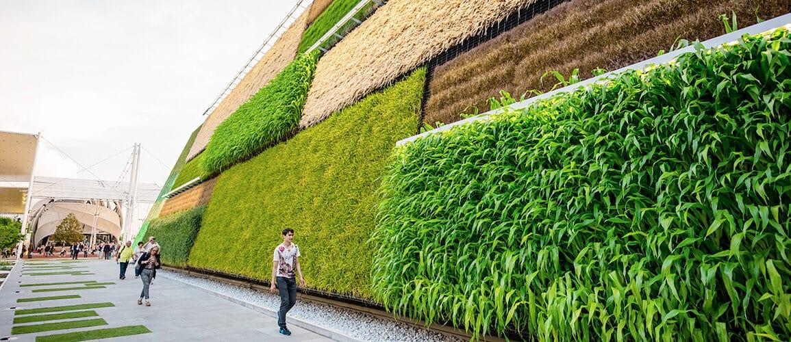 revistaSIM Responsabilidade ambiental Destaque Credito Eugenio Marongiu Shutterstock.com 3 1155x500 - Responsabilidade Ambiental:  requisito indispensável para arquitetos