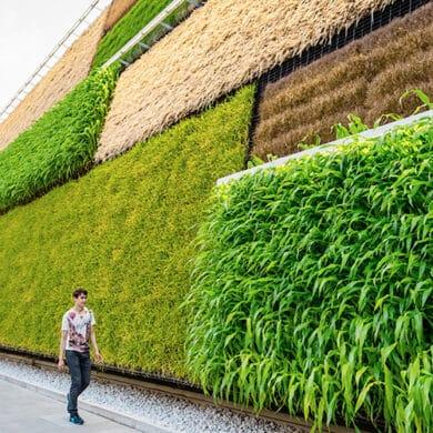 revistaSIM Responsabilidade ambiental Destaque Credito Eugenio Marongiu Shutterstock.com 3 390x390 - Responsabilidade Ambiental:  requisito indispensável para arquitetos