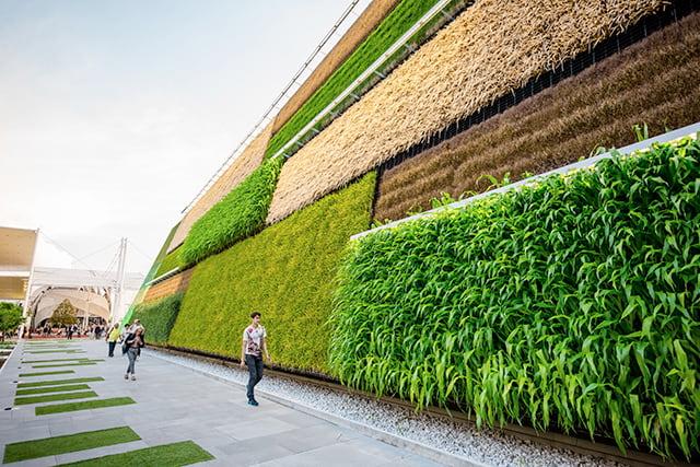 revistaSIM Responsabilidade ambiental Parede verde Credito Eugenio Marongiu Shutterstock.com  - Responsabilidade Ambiental:  requisito indispensável para arquitetos