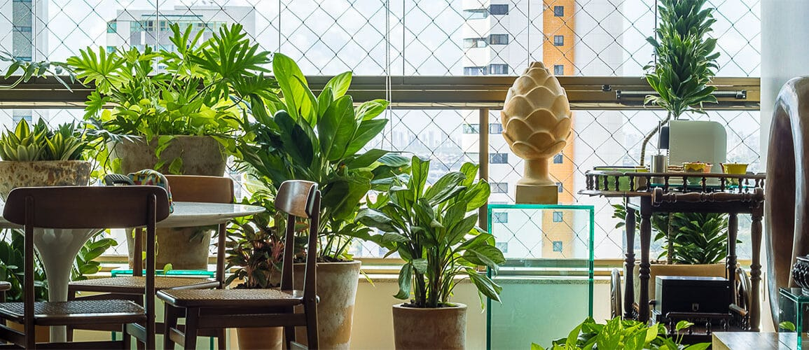 revistaSIM Paisagimos Jardins Pequenos DESTAQUE Credito joao Pedro 1155x500 - Anote as dicas para montar um jardim em espaços pequenos