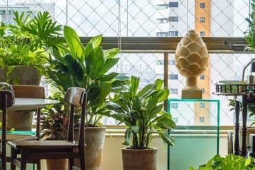 revistaSIM Paisagimos Jardins Pequenos DESTAQUE Credito joao Pedro 370x247 - Anote as dicas para montar um jardim em espaços pequenos