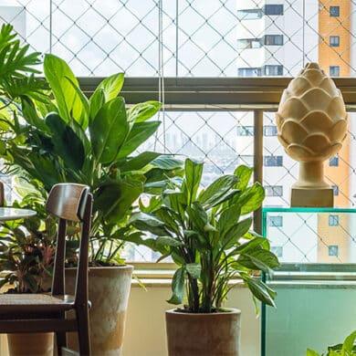 revistaSIM Paisagimos Jardins Pequenos DESTAQUE Credito joao Pedro 390x390 - Anote as dicas para montar um jardim em espaços pequenos