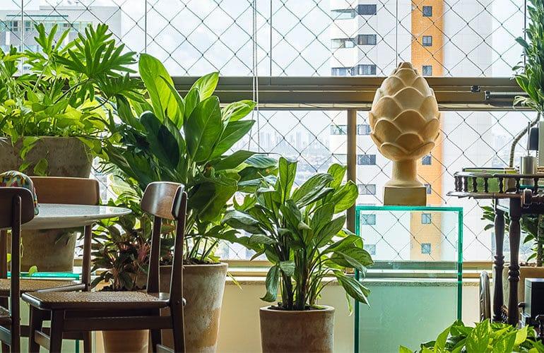 revistaSIM Paisagimos Jardins Pequenos DESTAQUE Credito joao Pedro 770x500 - Anote as dicas para montar um jardim em espaços pequenos