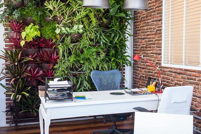 revistaSIM Paisagimos Jardins Pequenos Jardim Vertical Credito Lucas Oliveira - Anote as dicas para montar um jardim em espaços pequenos