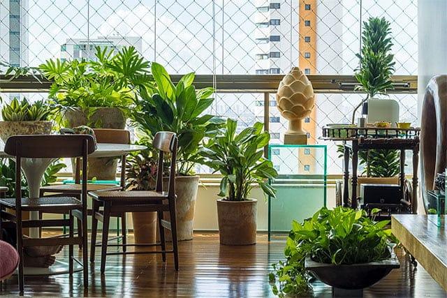 revistaSIM Paisagimos Jardins Pequenos Tipos de plantas Credito Joao Pedro - Anote as dicas para montar um jardim em espaços pequenos